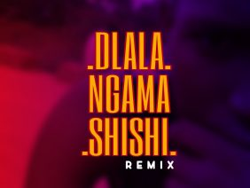 Dlala Mpz – Dlala NgamaShiShi (Remix)