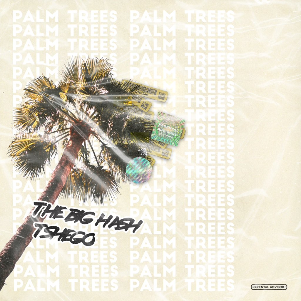 the big hash New The Big Hash x Tshego #PALMTREES Single Dropping Today [Listen] DkK0B TXcAMlMpl