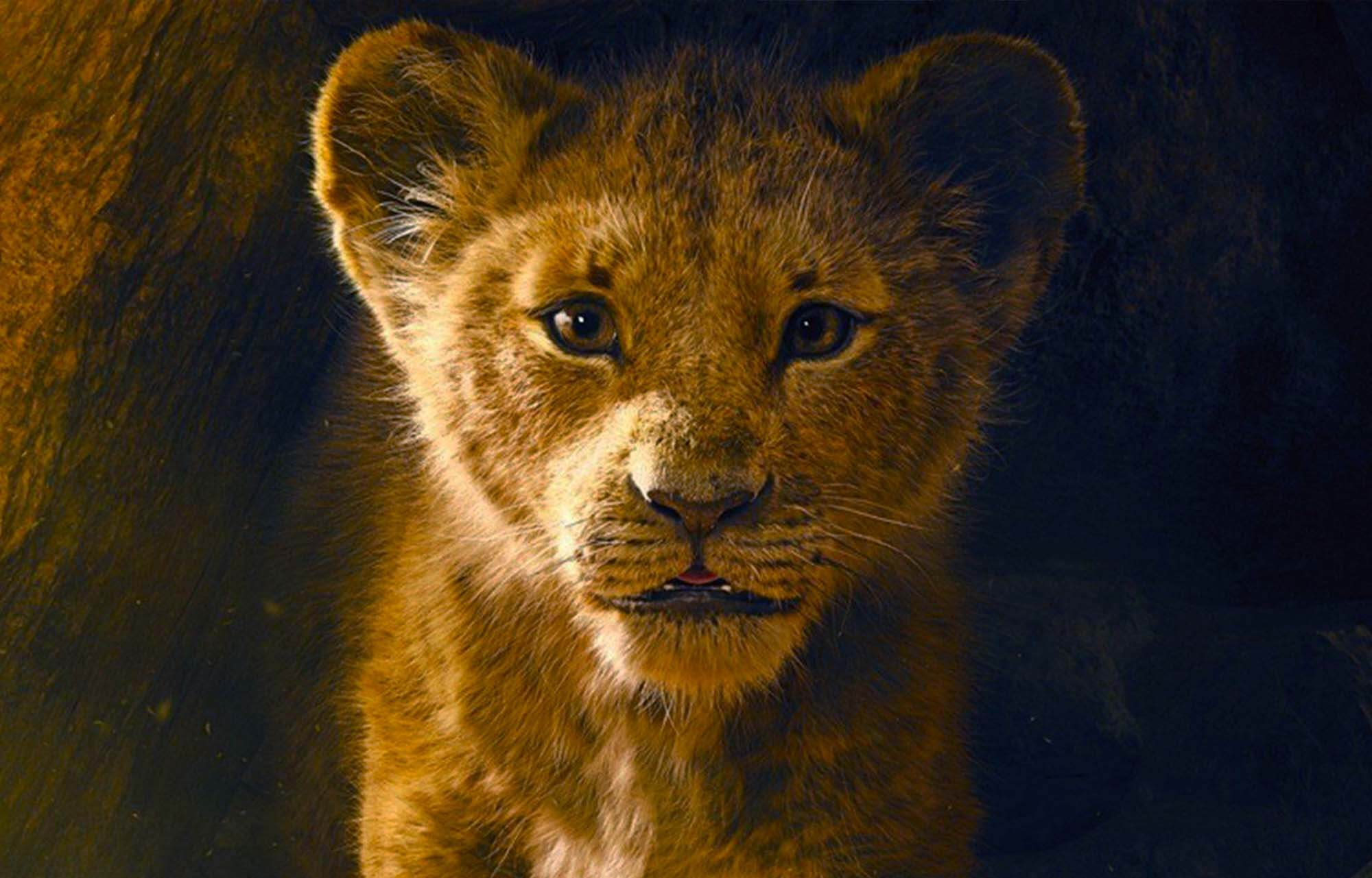 New 'Lion King' Trailer Breaks Disney Record For Most Views In 24 Hours [Watch] Lion King cover